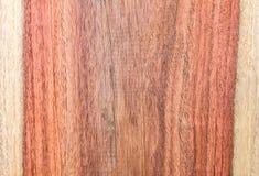 Сиамский Rosewood Стоковая Фотография