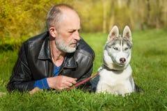 Сибирская лайка и она предприниматель Стоковые Изображения RF