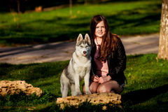 Сибирская лайка и она предприниматель Стоковая Фотография
