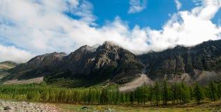 Сибирская живая природа, ряд Kodar Каменное река Syulban стоковые изображения rf