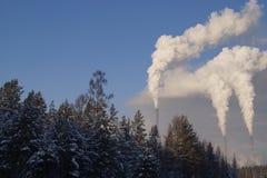Сибирь Завод Стоковое Изображение RF