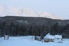 Сибирь, лыжа стоковая фотография rf