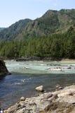 СИБИРЬ, РОССИЯ - 11-ОЕ ИЮНЯ 2012: Река Katun горы, горы Altai, Россия Стоковое Изображение