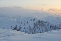 Сибирь Стоковые Фото
