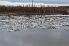 Сибирь Стоковая Фотография RF