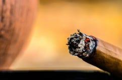 Сигара макроса тлея без крупного плана дыма Стоковые Фотографии RF