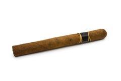 Сигара стоковые фото