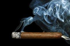 Сигара стоковая фотография rf
