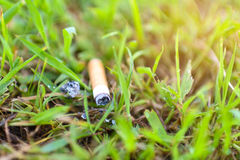 Сигарета на траве Стоковые Изображения RF