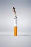 сигарета Стоковая Фотография RF