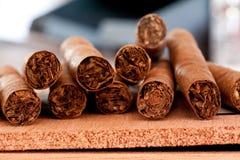 сигары несколько Стоковое Изображение