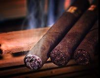 сигары стоковое изображение