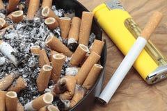 сигары Стоковые Фото