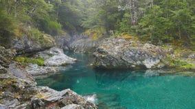 Сигналит внутри съемка красивого ущелья на сногсшибательном реке caples в Новой Зеландии сток-видео