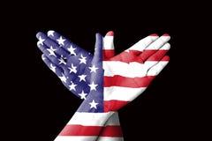 Сигнал рукой США птицы на черной предпосылке Стоковое Изображение RF