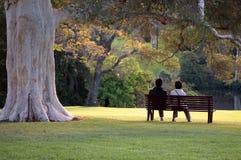 Сидеть в парке стоковая фотография rf