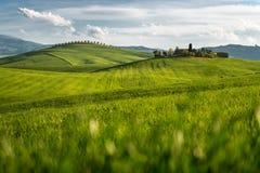 Сиена, d'Orcia Val, Тоскана Стоковая Фотография
