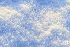 Сизоватый свежий снег покрывая землю стоковая фотография rf