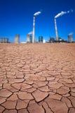 сила завода пустыни Стоковая Фотография