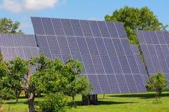 сила завода солнечная стоковое фото rf