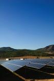 сила завода солнечная Стоковая Фотография