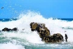 сила природы Стоковое фото RF