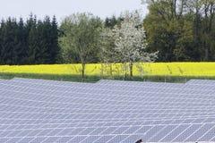 сила солнечная южная Испания завода панелей Стоковые Изображения