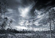 сила темноты Стоковые Фото