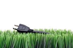 сила травы шнура Стоковая Фотография