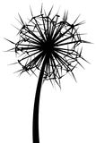 сила цветка энергии Стоковые Изображения