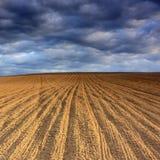 силовая линия поля Стоковые Фото
