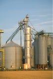 силосохранилища зерна Стоковое Фото