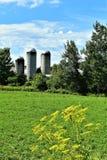 3 силосохранилища расположенного в Franklin County, Нью-Йорке, Соединенных Штатах, США стоковые фотографии rf