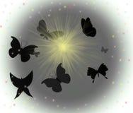 силуэты бабочки Стоковые Фото