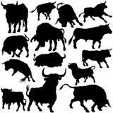 силуэты быка установленные Стоковые Изображения
