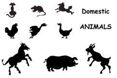силуэты животных отечественные Стоковое Изображение