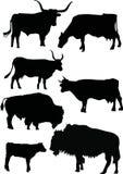 силуэты коровы буйвола иллюстрация штока