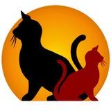 силуэты кота сидя солнце Стоковые Изображения