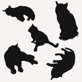 Силуэты котов в различном номере два иллюстрации вектора представлений бесплатная иллюстрация