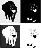 силуэты котов Стоковое Изображение RF