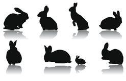 силуэты кролика Стоковые Фотографии RF