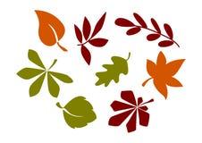Силуэты листьев и листва Стоковое Фото