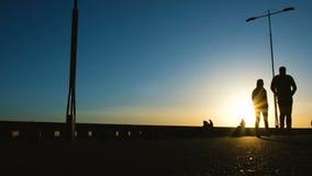 Силуэты людей идя на заход солнца вдоль прогулки, велосипедисты ехать в парке сток-видео