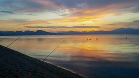Силуэты рыболовных удочек в ряд против захода солнца сток-видео