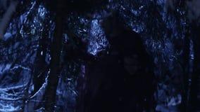 Силуэты тени 2 людей двигая в снежный лес зимы молчаливой ночью видеоматериал