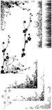 силуэты травы цветка Стоковое Изображение