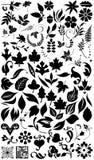 силуэты травы цветка Стоковое Фото