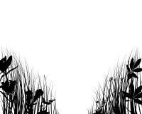 силуэты травы Стоковое Изображение