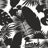 Силуэты тропических листьев вектор картины безшовный Стоковые Фотографии RF