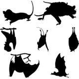 силуэты установленные летучими мышами Стоковые Изображения